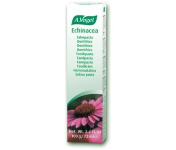 Dentaforce Echinacea