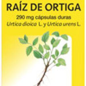 Arkocápsulas raiz de ortiga (290 mg 48 cápsulas)