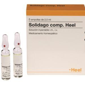 Solidago comp-Heel 5 ampollas 2,2 ml
