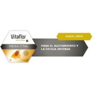 Vitaflor Mega vital 20 ampollas