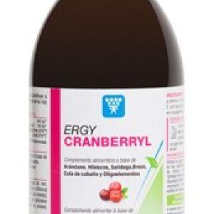 Nutergia Ergycranberryl botella 250 ml