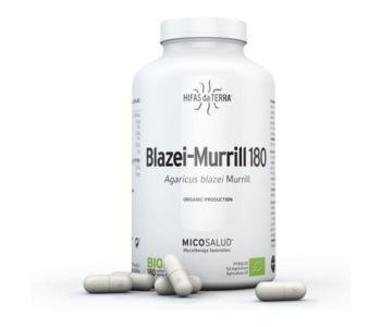 Blazei Murrill
