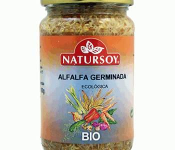 Alfalfa germinada