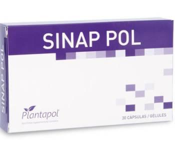Sinap Pol