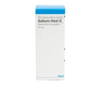 Galium S