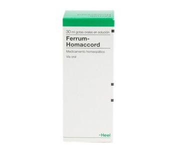 Ferrum Homaccord GTS