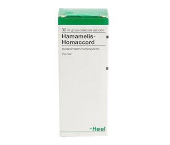 Hamamelis