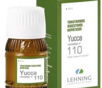 YUCCA N° 110