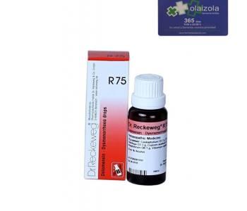 R75-DOLOMENSIN